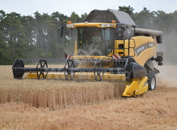 Moissonneuse-batteuse New holland cx840 0