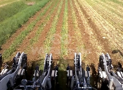 StripTill Yetter 7 rangs 32,50 €