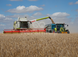 Moissonneuse-batteuse CLAAS 750 0